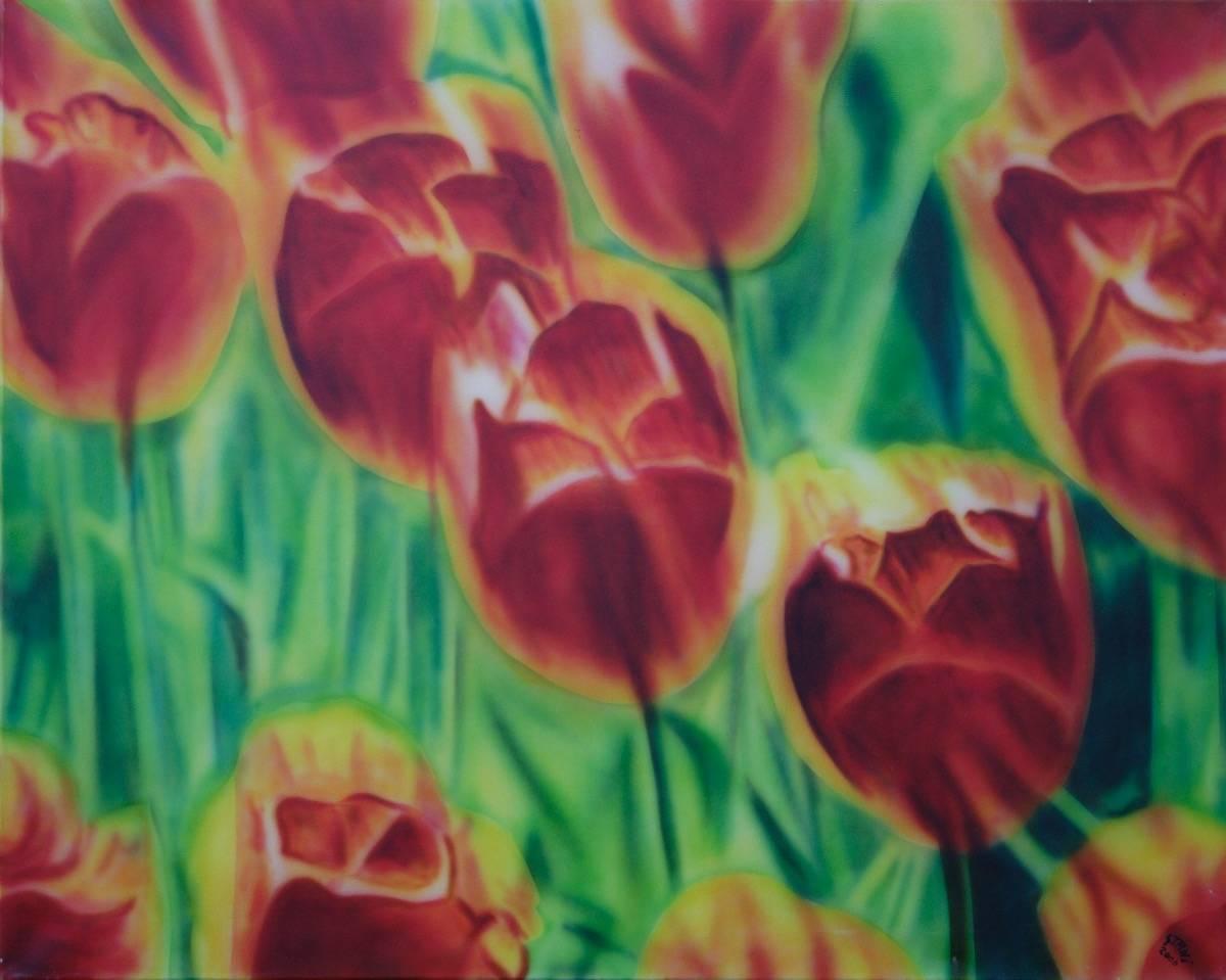 Tulpen B: 100 H: 80