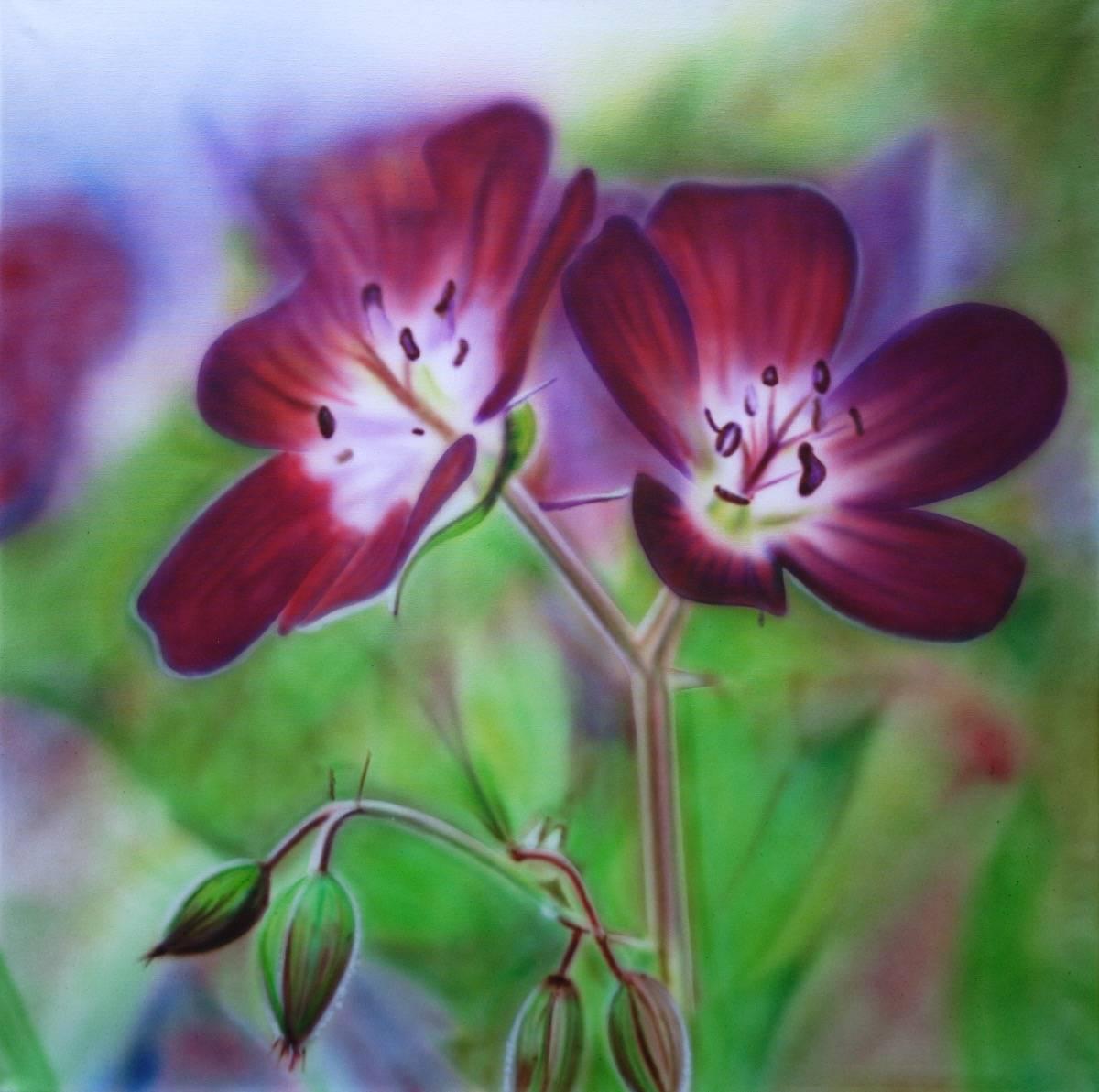 Blume B:100 H: 80
