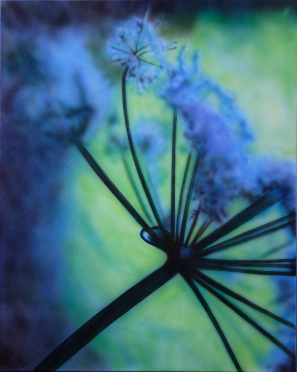 Blume 3 B: 80 H: 100